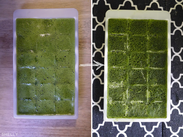 frozen_kale_cubes_03_in_tray