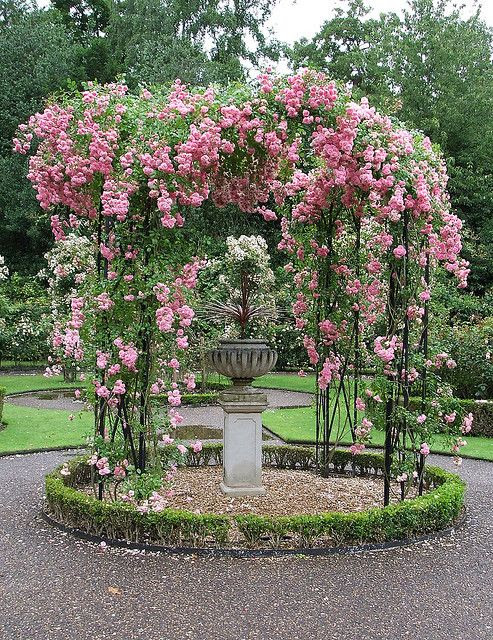rose garden - Start a trend beautifying your town. Let those with the resources contribute to it, and have schoolchildren help plant and prune. Plant trees !!