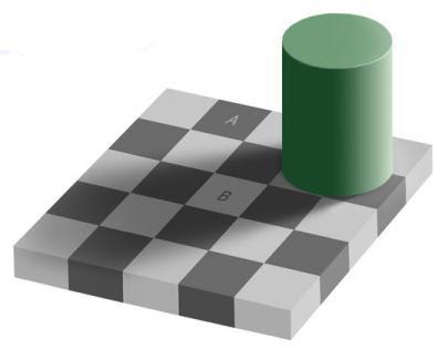 Checker Board Illusion