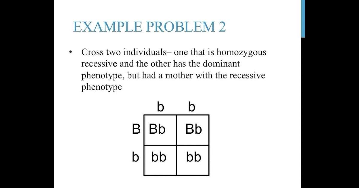 Monohybrid Punnett Square Practice Worksheet Answers ...