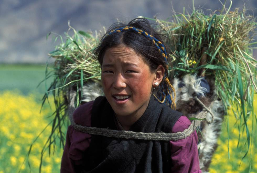 Una mujer carga un manojo de heno en China.