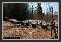 Baird trail 5