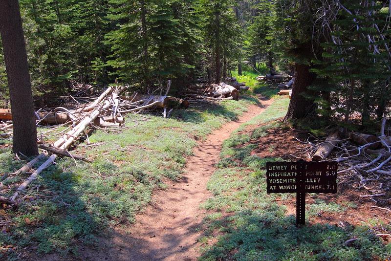 IMG_4445 McGurk Meadow