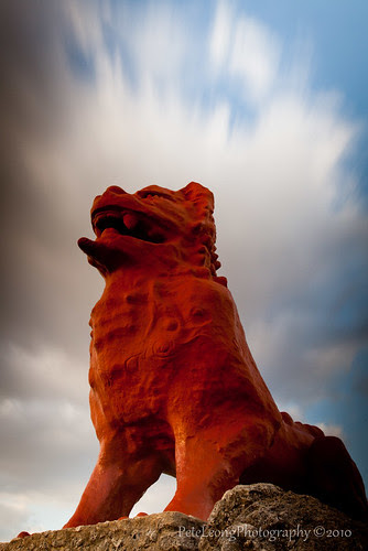 Shisa the guardian of Okinawa by Shenanigans in Japan
