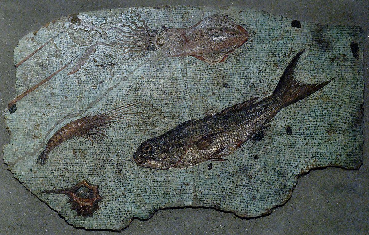Fil: Mosaikmarinmålning Musei Capitolini AntCom32359.jpg