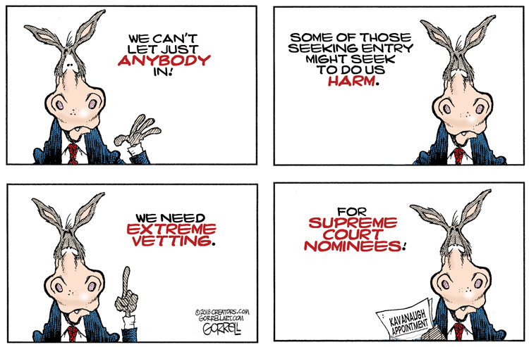 Image result for extreme democrats cartoons