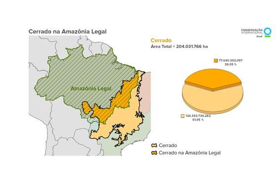 Cerrado (Foto: Divulgação)