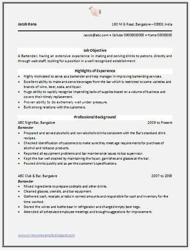 resume format  resume samples over 50