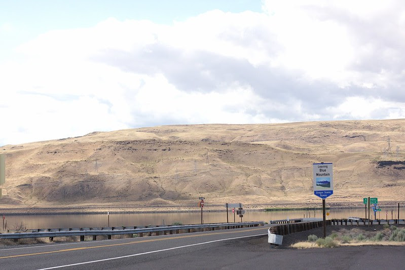 The blue mountains (Oregon Trail related)