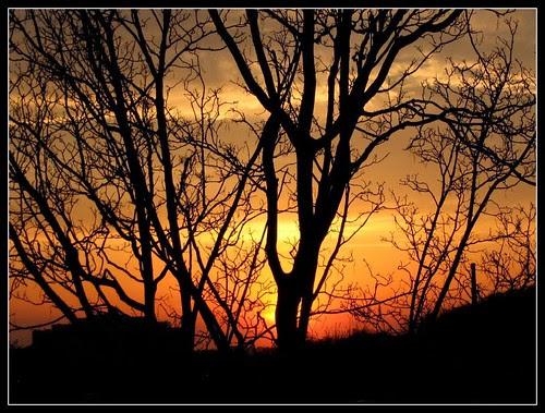 Sunset at Roxbury