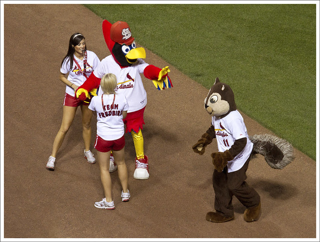 Rally Squirrel 2