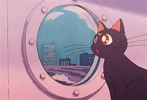 cat luna  sailor moon image anime sailor moon