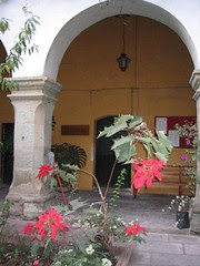 Church Courtyard and Nochebuena