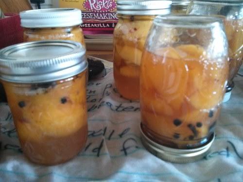 Bourbon nectarines