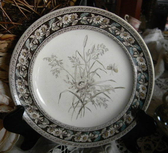 Victorian Aesthetic Movement Brown Turquoise Transferware Plate Spode W T Copeland Birds Nest Butterfly Daisies and Wildflowers