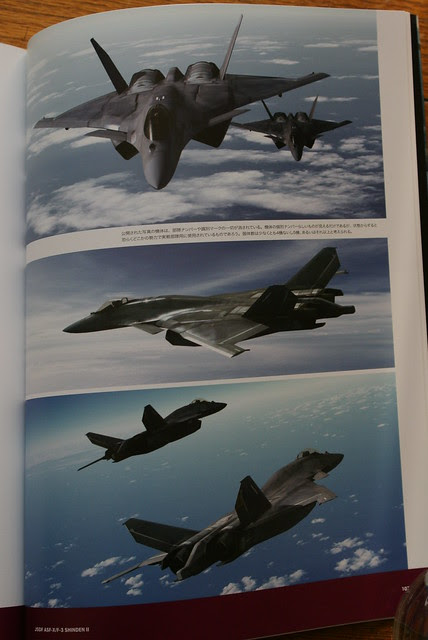 Ace Combat Master File - ASF-X SHINDEN II - 15