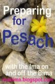 Preparing for Pesach with Ima on and off the Bima