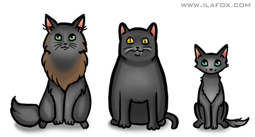 Gato preto, três gatos, Vinil, Miucho e Rabisco, ilustração by ila fox