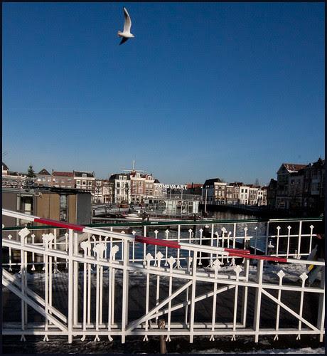 blauwpoortsbrug (2) by hans van egdom