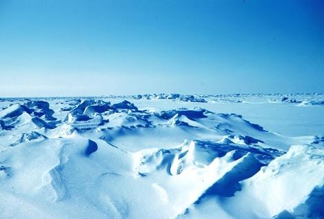 Paisaje ártico. | E.M.