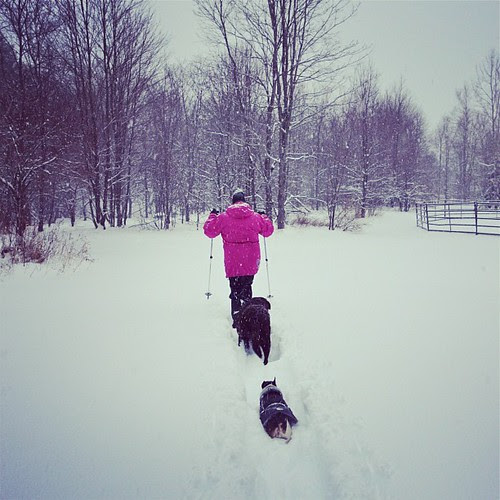 #snowshoeing with @bzctmom blazing the trail in the deep #snow for #leo & #teagan in #vermont