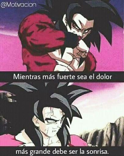 Frases De Dragon Ball Z Motivacion Gabriel Garcia Marquez