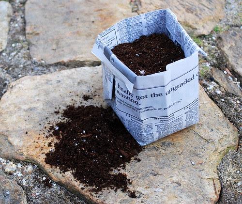 Paper Pot dirt