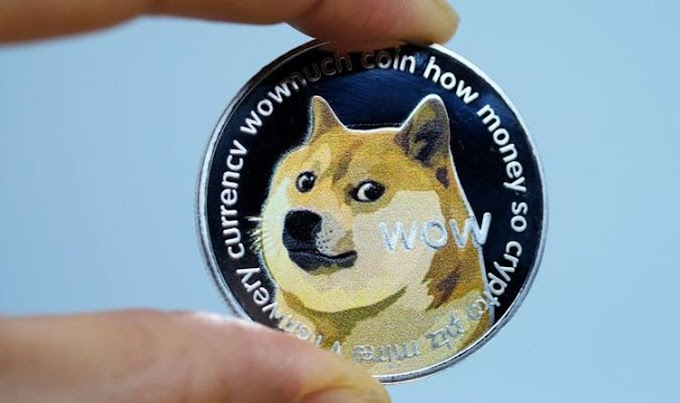 Dogecoin price: Why is dogecoin going up? Analyst warns DOGE 'bubble has to burst'