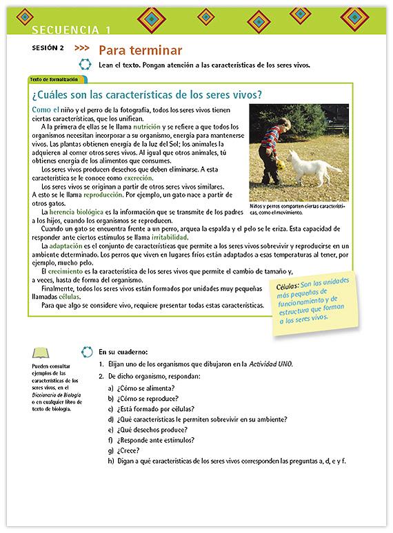 Estructura Caracteristica De Los Seres Vivos - Varias..