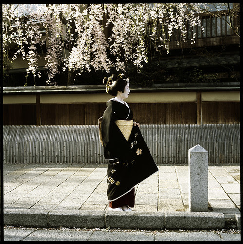 japan_04 by jenny reed photography
