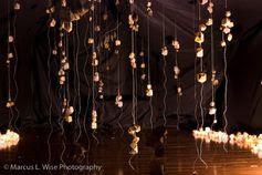 Ripe: An Immersive Art Installation