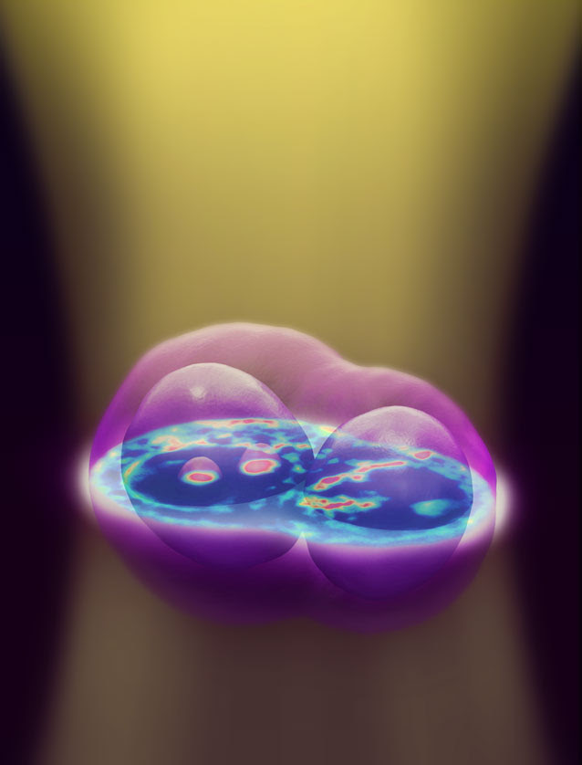 3d_imaging_living_cells