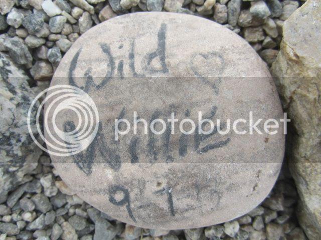 photo WildWilliesstone_zpsa2073a0a.jpg