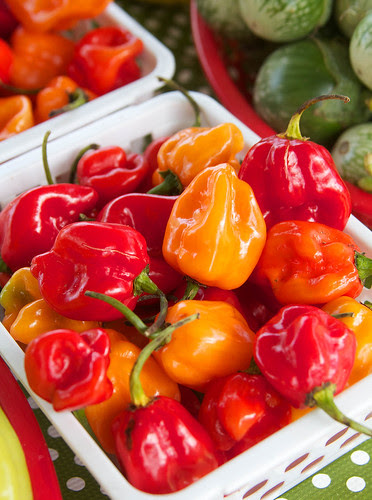 Peppers_1443