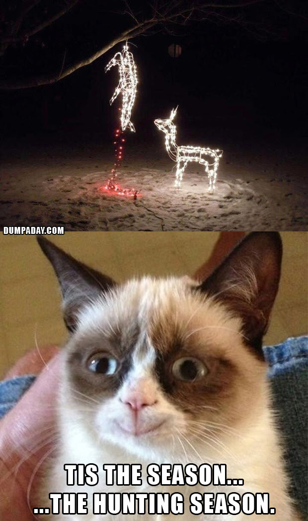 Christmas Memes Cats.Funny Grumpy Cat Christmas Memes