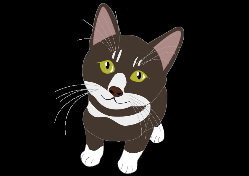 子猫イラスト広場 株式会社ソエル