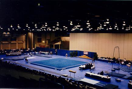 Gymnastics - Battle Creek