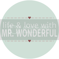 Life and Love with Mr. Wonderful