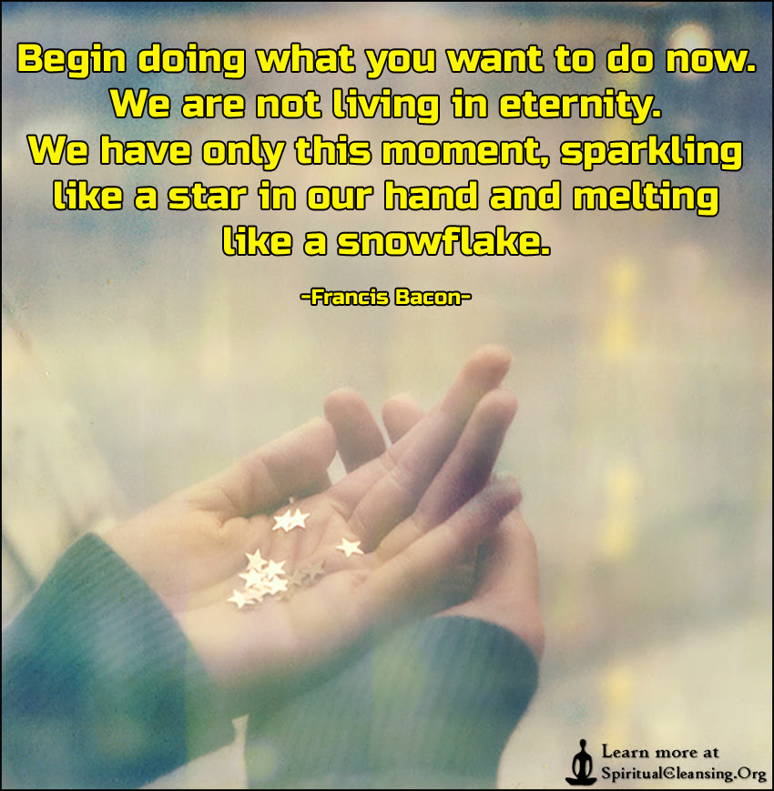 Begin Doing What You Want To Do Now We Are Not Living In Eternity