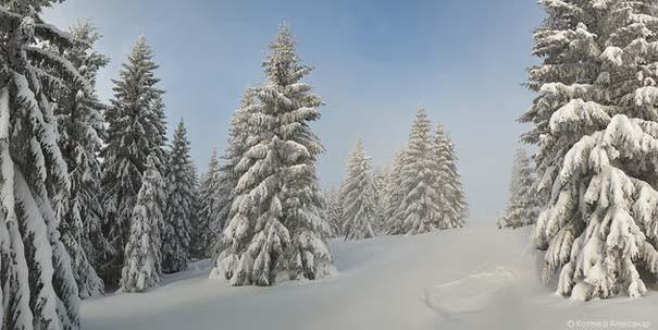 Χειμώνας στα Καρπάθια Όρη (6)