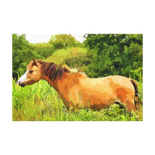 WELSH PONY CANVAS PRINTS