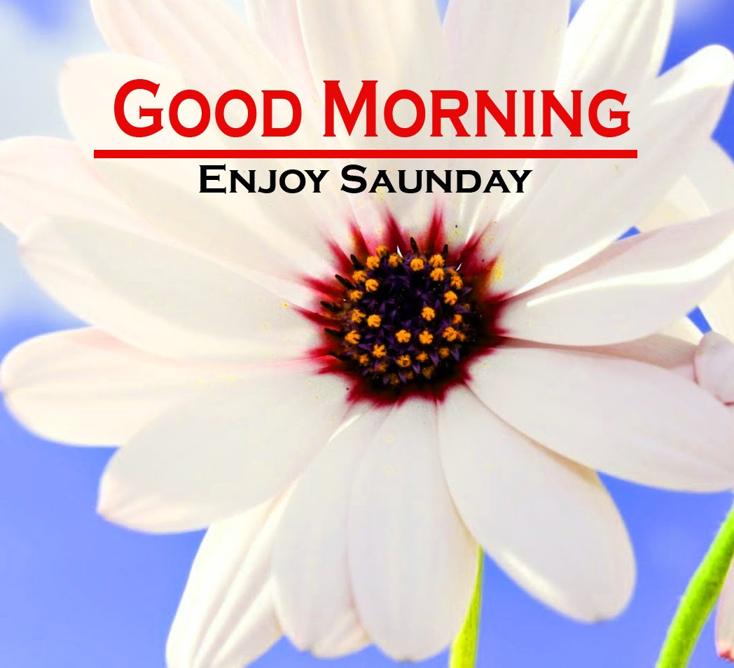 Sunday Good Morning Images 8 1