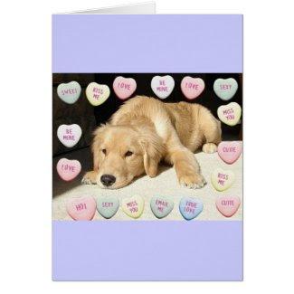 Valentine's Day Golden Retriever Card