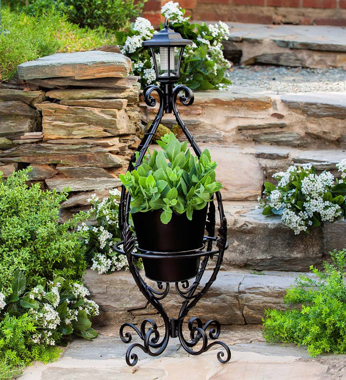 Black Wrought Iron Plant Stand with Solar Light   Plants ...