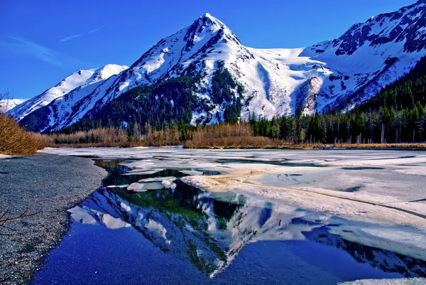 Reflected in the Great Alaskan Wilderness. — Stock Image 27786263