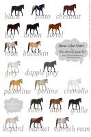 Equine Colors- The Dun Gene by Kholran on DeviantArt