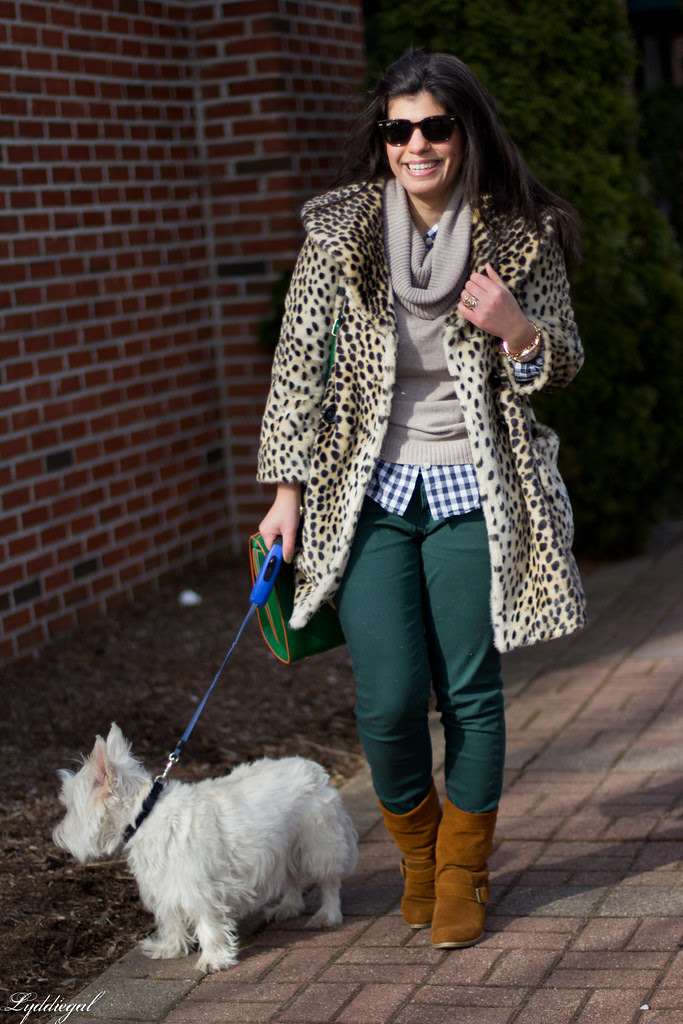 the leopard, the gingham and the westie-3.jpg