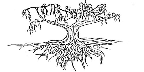 Οι απαγορευμένοι καρποί της «Ανάπτυξης»