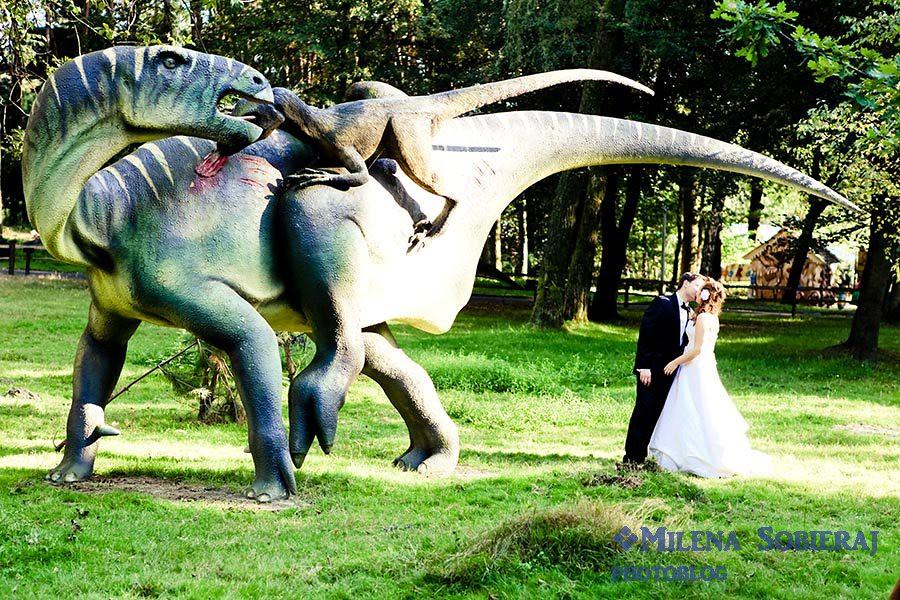 Plener slubny z dinozaurami