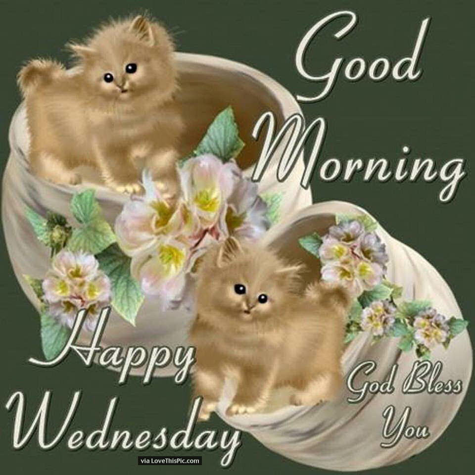 Good Morning Happy Wednesday God Bless Your Day Quote Pictures